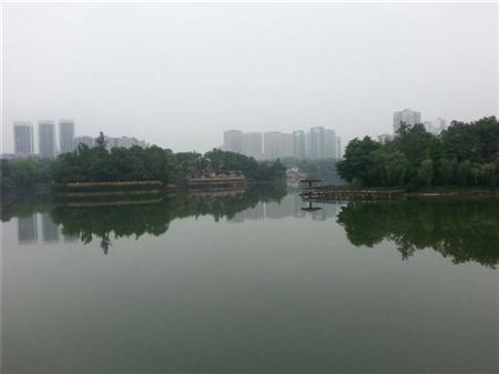 龙湖香樟林-其他