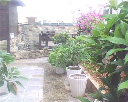 同景国际G组团G组团-花园