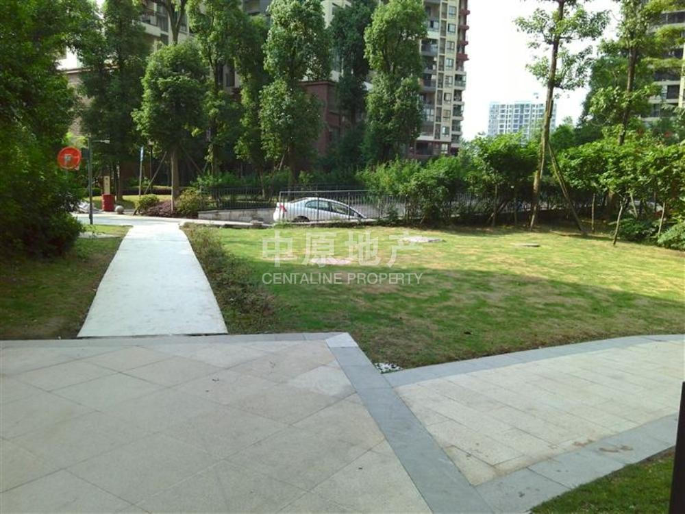 奥林匹克花园七期(紫枫郡)-花园